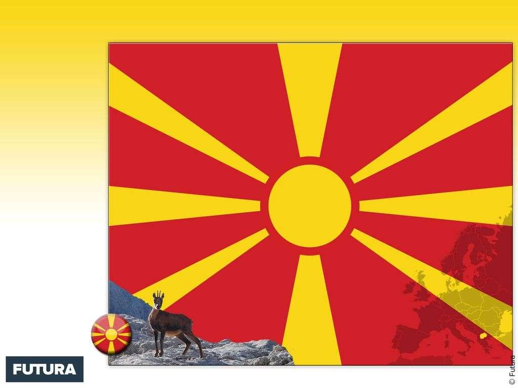 Drapeau : Macédoine