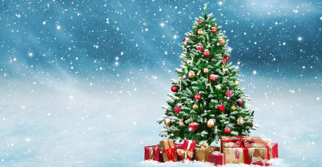 Histoire Du Sapin De Noel Petite histoire du sapin de Noël | Dossier