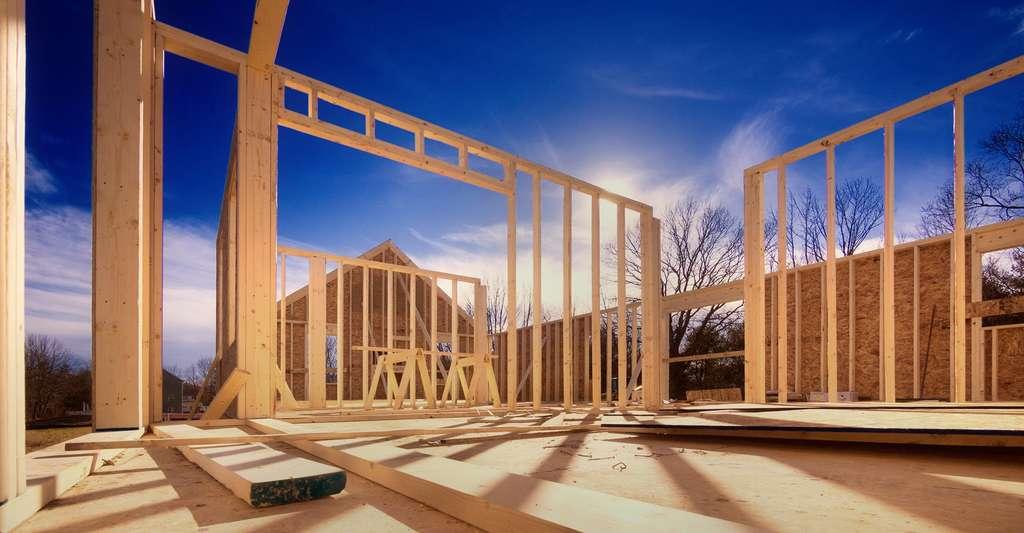 Construction d'une maison à ossature en bois. © Christian Delbert, Shutterstock