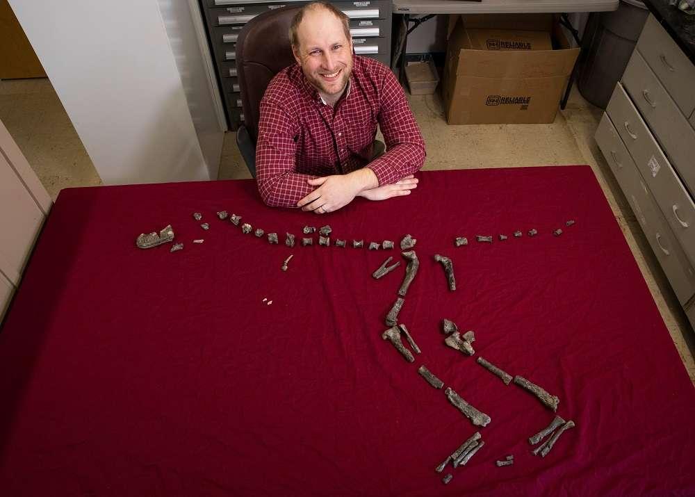 Le paléontologue Sterling Nesbitt assis auprès du fossile de l'espèce Suskityrannus hazelae âgé de 92 Ma, qu'il a découvert en 1998 au Nouveau-Mexique. © Virginia Tech