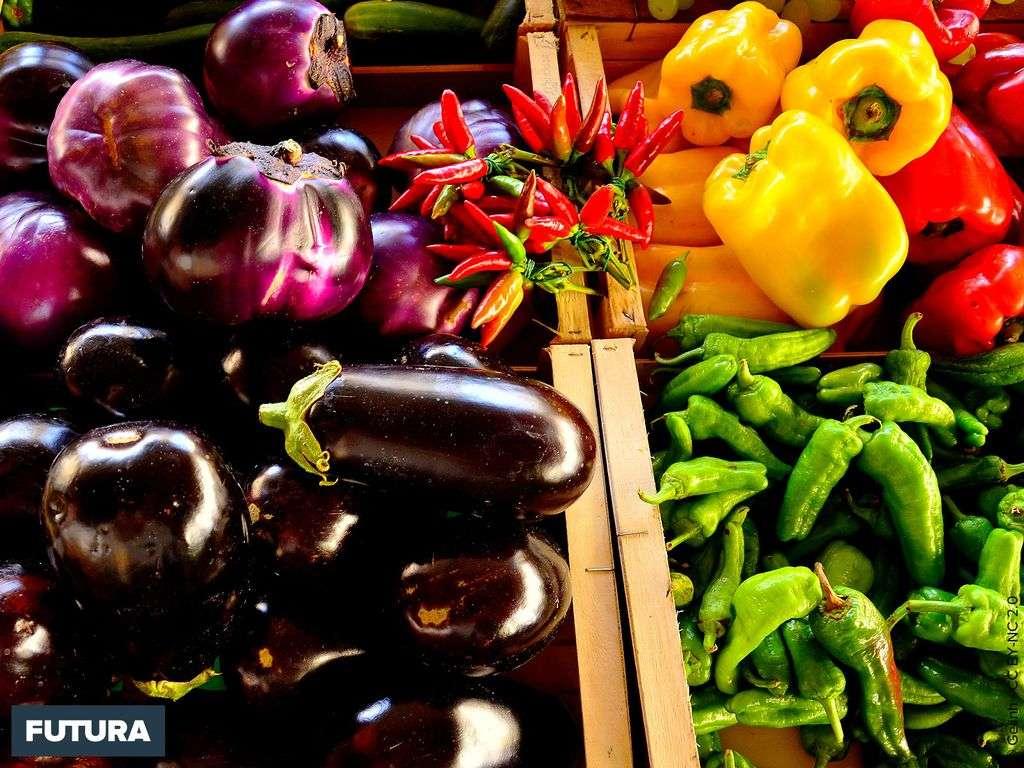 Ratatouille : aubergines, poivrons...