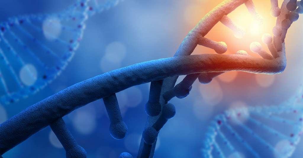 Qu'est-ce qu'un poison ? Les toxines présentes dans le poison peuvent avoir différents effets sur l'organisme et les cellules, comme, par exemple, le blocage de l'ADN. Ici, un brin d'ADN. © Sergey Niven, Shutterstock