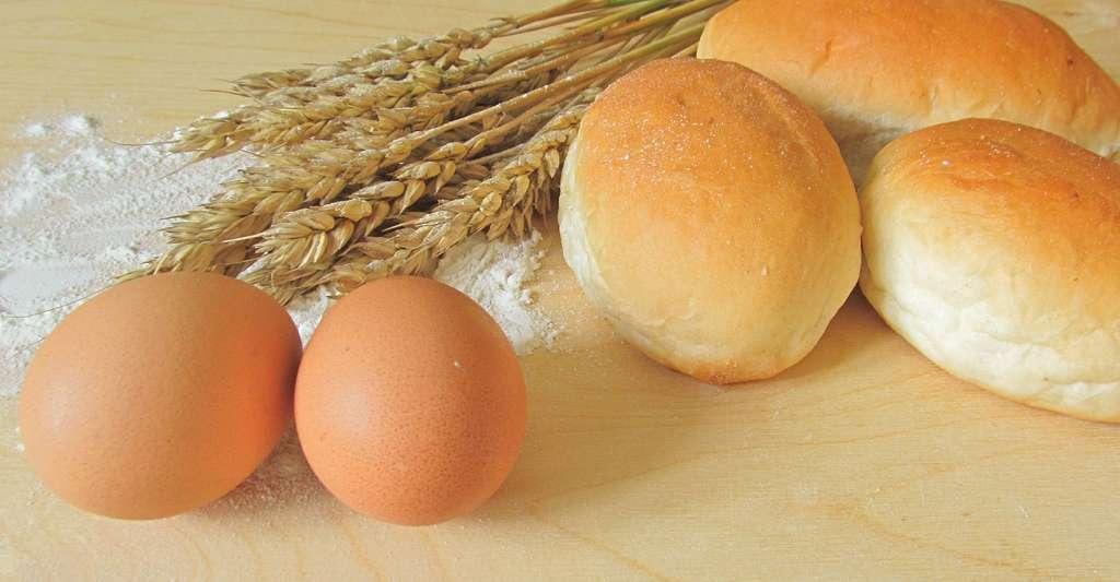Farine de seigle, œufs, pour faire de délicieux petits pains. © Perisfey, Pixabay, DP