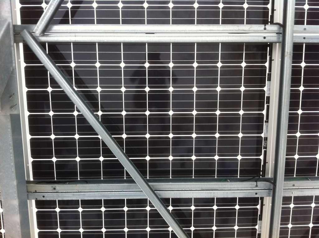 Chaque module solaire se compose de 60 cellules photovoltaïques EarthON carrées mesurant 15,6 cm de côté. Leur galette de silicium monocristallin mesure en moyenne 180 µm d'épaisseur. Les contacts sont en argent. © PVG Solutions