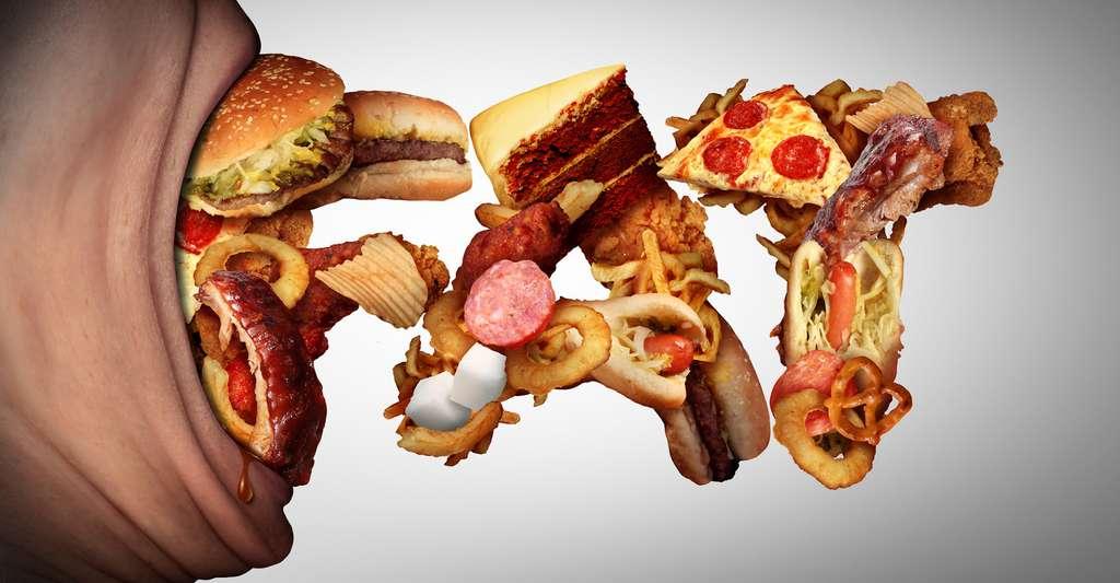 Manger gras n'est généralement pas bon pour la santé. Mais peut-être les femmes enceintes devraient-elles faire quelques entorses à leurs régimes équilibrés afin de protéger leurs enfants de la maladie d'Alzheimer. Des études plus poussées seront nécessaires pour le confirmer. © freshidea, Fotolia