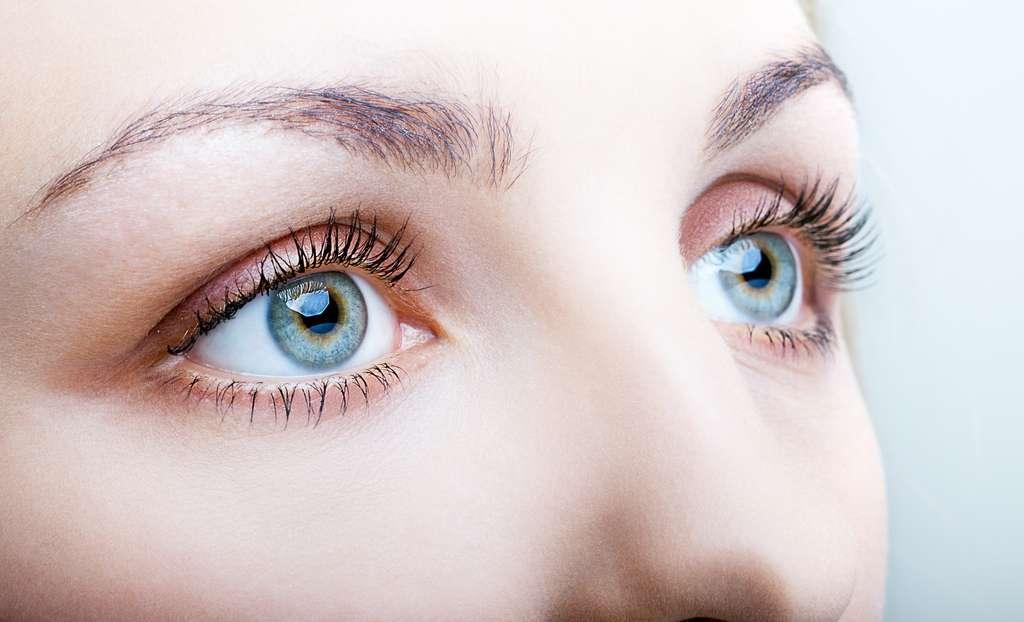 Depuis des années des chercheurs œuvrent pour développer une rétine artificielle et redonner la vue à des patients atteints de DMLA. © Serg Zastavkin, Adobe Stock