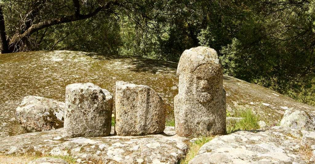 Fragments de statue-menhir. © Jean-Pol GRANDMONT, CC BY-SA 3.0