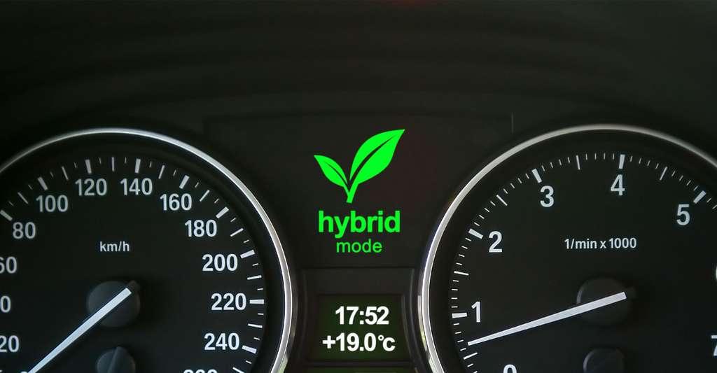 Modèle hybride. © Gleb Predko, Shutterstock