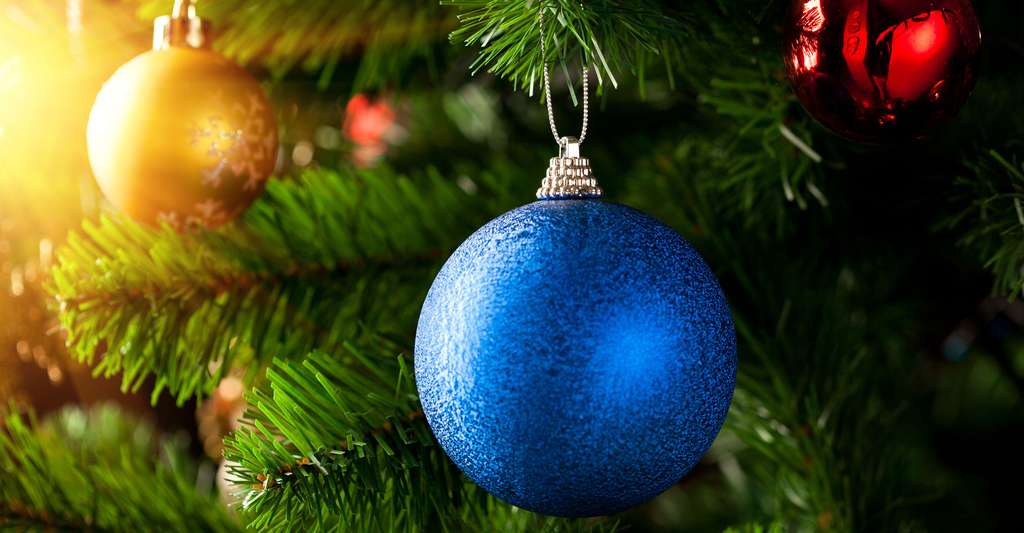 Le marché du sapin de Noël. © Nikkytok, Shutterstock