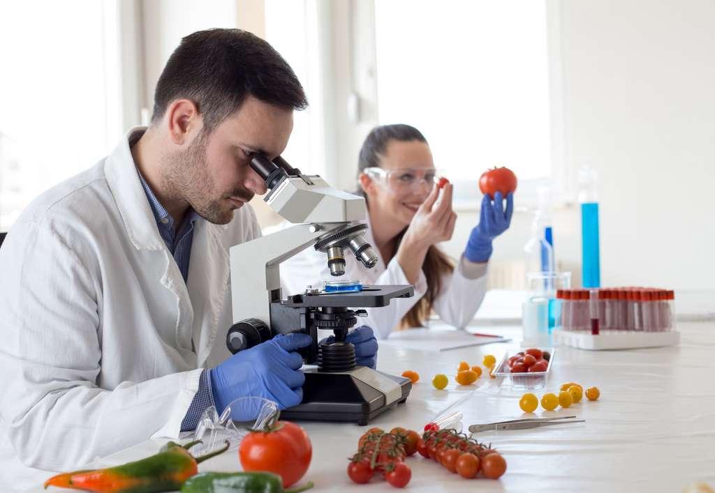 Les additifs interdits dans les produits bio sont issus de la synthèse chimique ou extraits via des solvants chimiques. © Budimir Jevtic, Adobe Stock