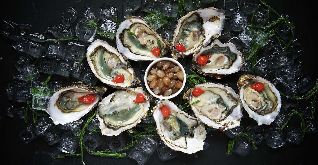 Dégustation d'huîtres. © Free-Photos, Pixabay, DP