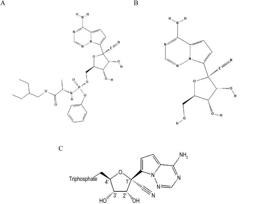 Les structures chimiques de a) Remdesivir; b) GS-441524 c) le métabolite triphosphaté .© PubChem Database