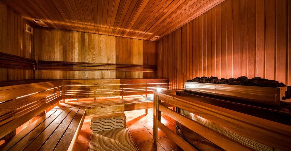 Quelle est l'histoire de la balnéothérapie ? Ici, un sauna. © Alex Tihonovs, Shutterstock