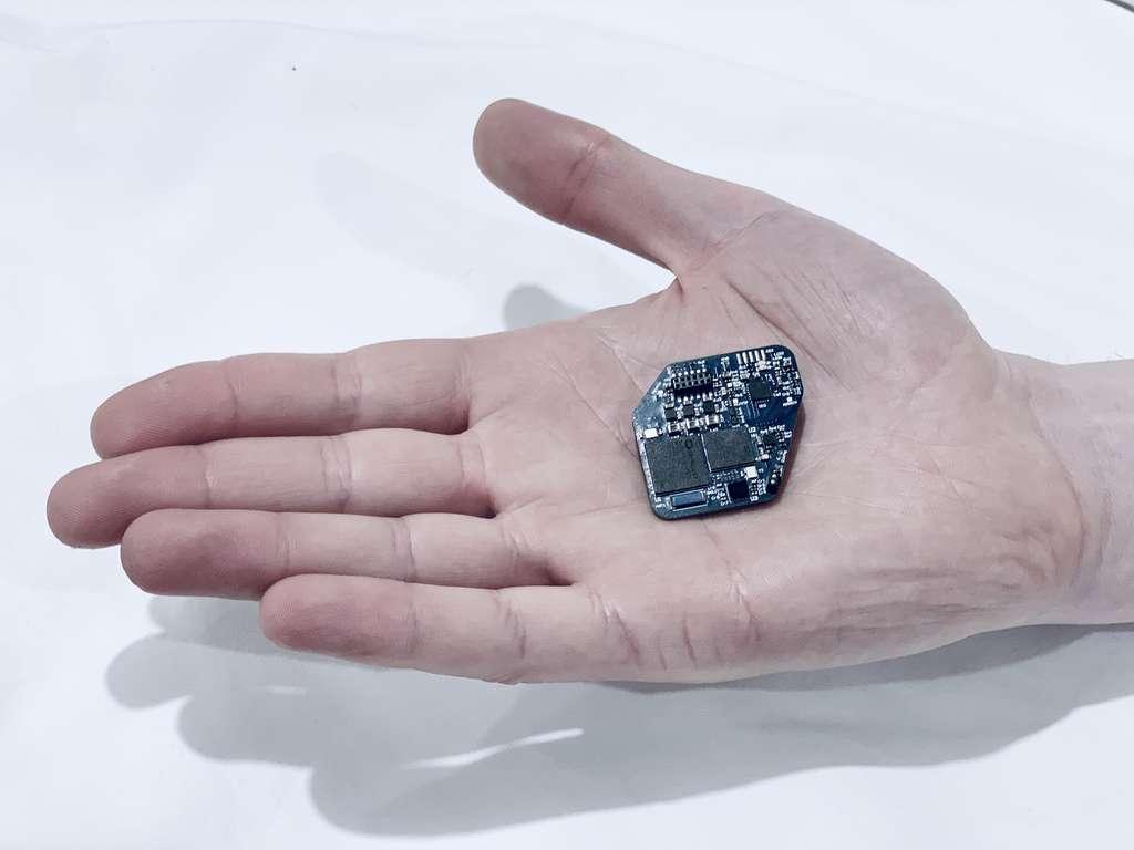 La puce est capable d'éliminer le « bruit » généré par la stimulation de l'implant aux signaux électriques naturels du cerveau. © UC Berkeley, Rikky Muller