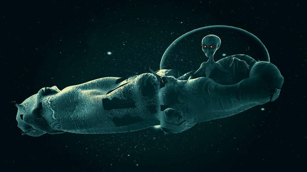 Selon Avi Loeb, astrophysicien à l'université de Harvard (États-Unis), les caractéristiques d''Oumuamua peuvent s'expliquer par l'hypothèse qu'il s'agit d'un engin extraterrestre. © Giovanni Cancerni, Adobe Stock