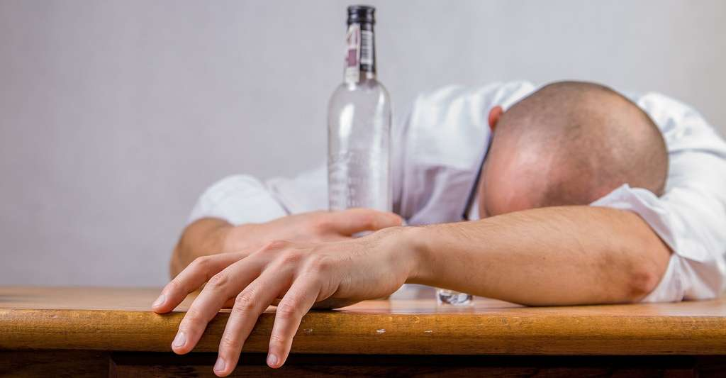 Selon les chercheurs de l'université de Californie à Los Angeles (Ucla, États-Unis), la capacité à décomposer efficacement l'alcool rapidement pourrait aider les gens à protéger leur foie contre les dommages liés à l'alcool. © jarmoluk, Pixabay, CC0 Creative Commmons