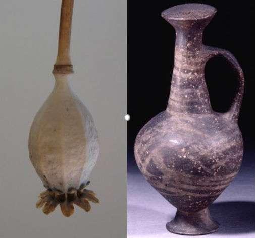 Le pichet (à droite) a la forme d'une graine de pavot tête en bas (à gauche). Étant fermé, il a assuré une bonne conservation des résidus qu'il contenait. © Rachel Smith, Jane Thomas-Oates, University of York
