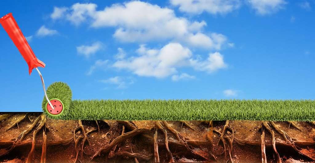 Peinture écologique, de quoi s'agit-il ? © Alexlmx, Fotolia ; Three-shots Pixabay, DP