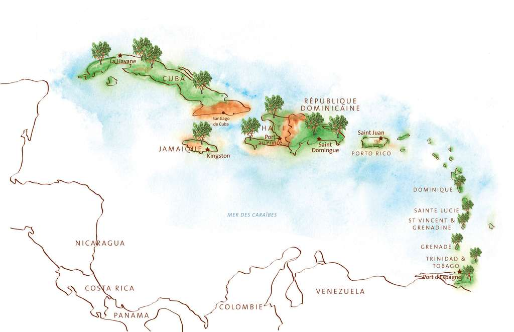 La production de cacao fin dans l'arc caraïbe, de Cuba à Trinidad. © Gwendolin Butter