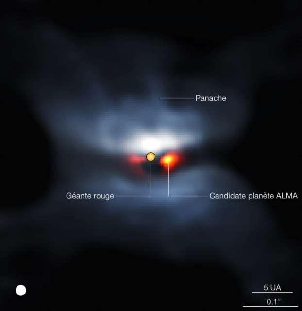 Image composite de L2 Pup en lumière visible (par l'instrument VLT/Sphere, couleurs bleutées) et image Alma dans le continuum (teintes orangées). L'étoile centrale a été soustraite de l'image Alma pour mieux montrer le compagnon. La taille apparente de l'étoile centrale est représentée à l'échelle. Le disque blanc dans le coin inférieur gauche représente la résolution de l'image. © P. Kervella et al. (CNRS, U. de Chile, Observatoire de Paris, Lesia, ESO, Alma