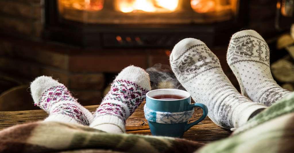Bien au chaud devant la cheminée. © Valentyn Volkov, Shutterstock