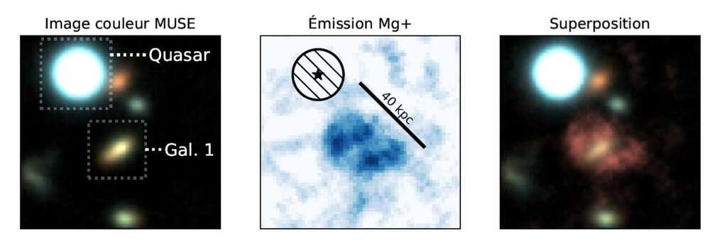 À gauche, le quasar et la galaxie Gal1. Au centre, la nébuleuse de magnésium observée par les chercheurs. À droite, la superposition de cette nébuleuse avec Gal1. © Johannes Zabl, CNRS