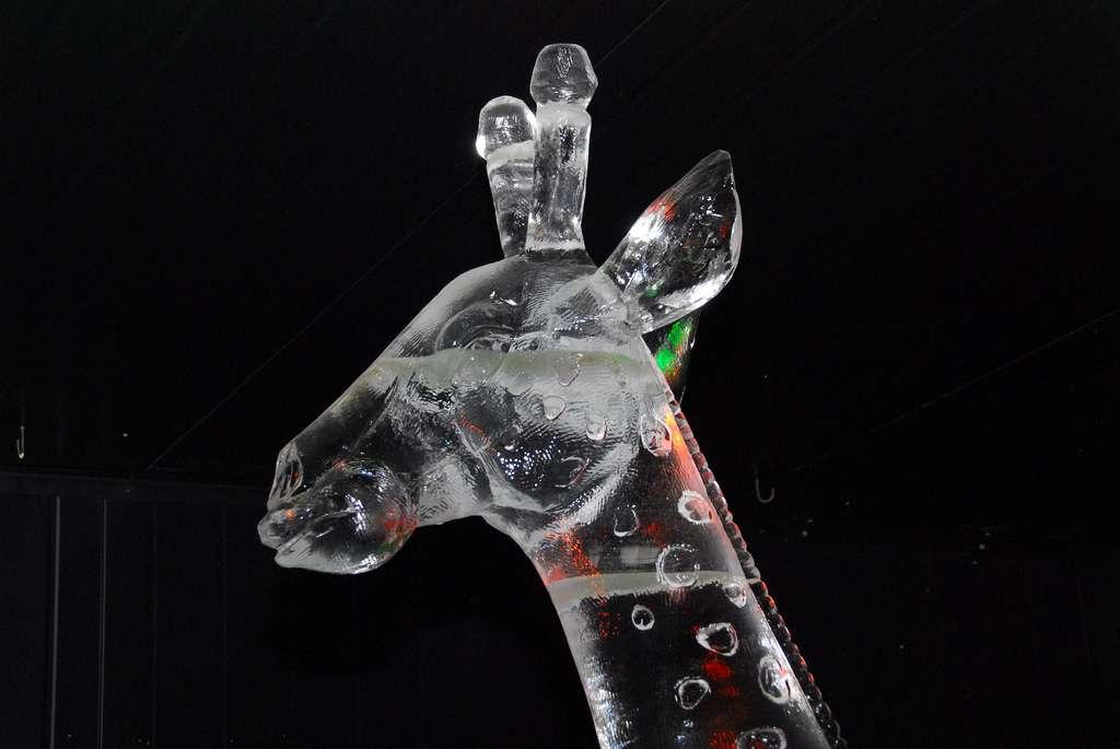 Sculpture sur glace girafe, à Madurodam, aux Pays-Bas