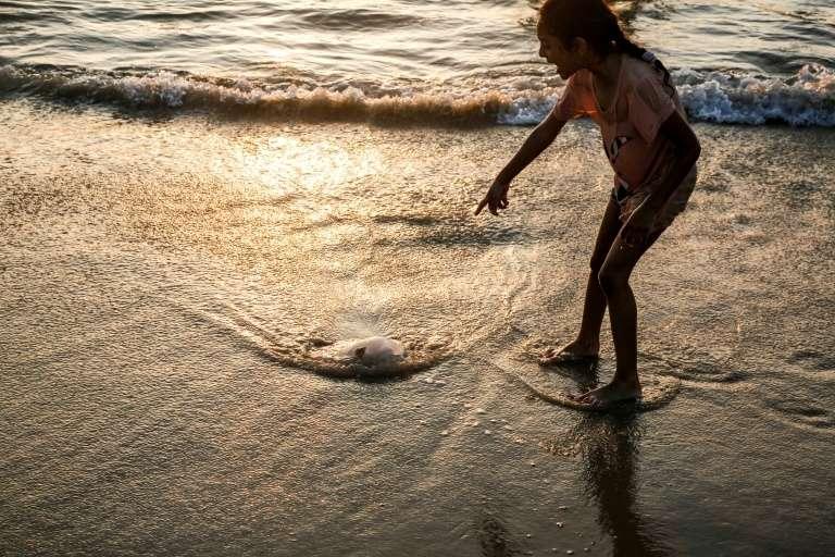 Quand les méduses déferlent sur les plages ! © Mohammed Abed, AFP/Archives