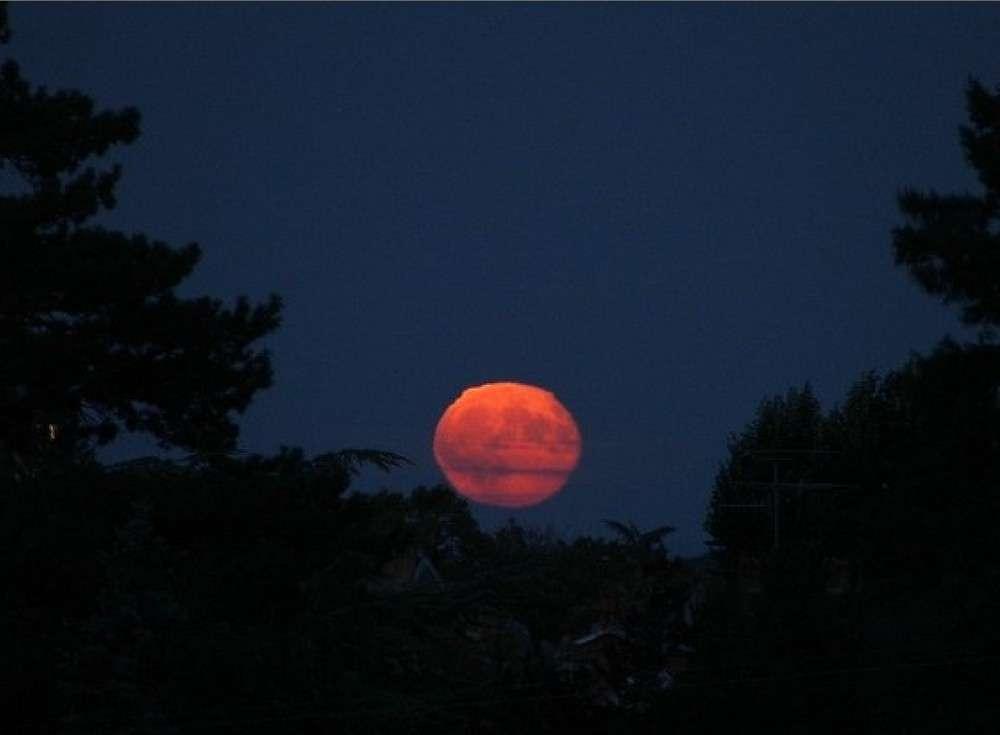Lune aplatie près de l'horizon