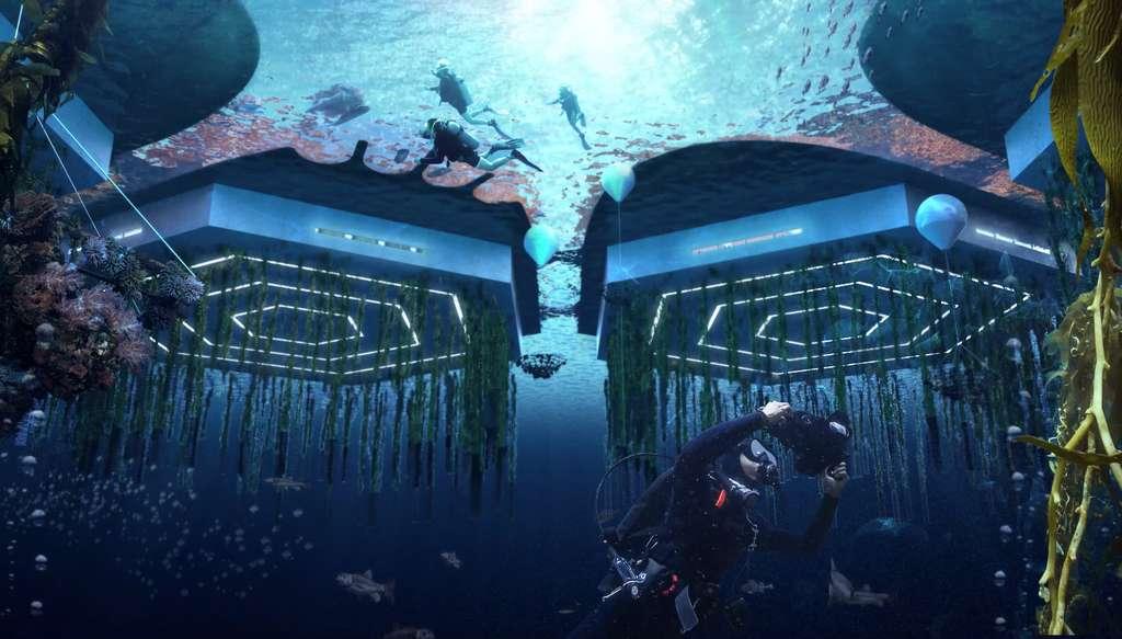 Des algues et fruits de mer seront élevés dans des fermes aquatiques verticales. © Oceanix/BIG-Bjarke Ingels Group