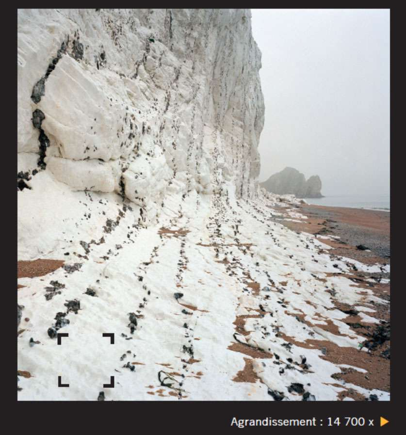 Les falaises de craie comme celle-ci sont constituées d'un empilement de fossiles de micro-organismes (à droite). Il n'est pas rare que les dépôts calcaires renferment des fossiles d'animaux plus gros. © Giles Sparrow, Dunod, DR