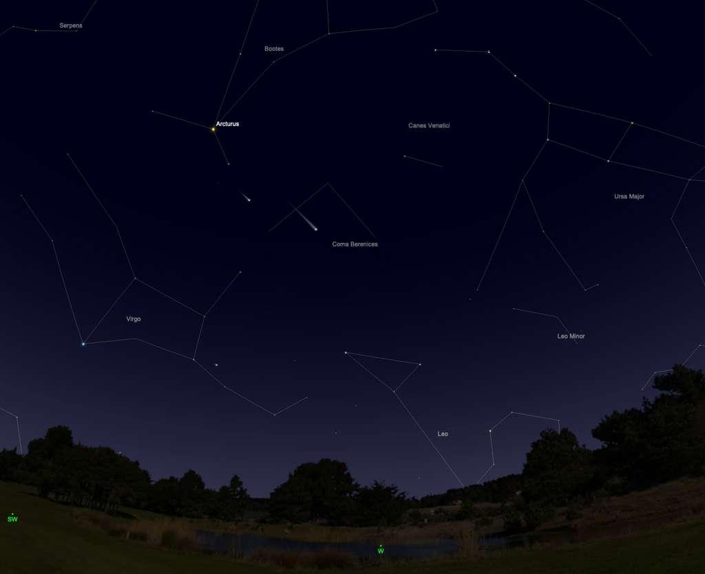 Début août, la comète Neowise sera visible dans la Chevelure de Bérénice, au-dessus de l'horizon ouest, en début de nuit. © SkySafari