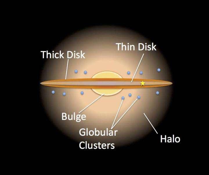 Une vue d'artiste de notre Voie lactée représentant notamment le disque épais – thick disk – et le disque mince – thin disk. © Nasa, JPL Caltech, R.Hurt, SSC