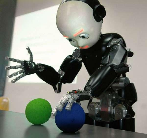 Le robot iCub en interaction avec des objets inconnus à priori. © Courtesy of the RobotCub project