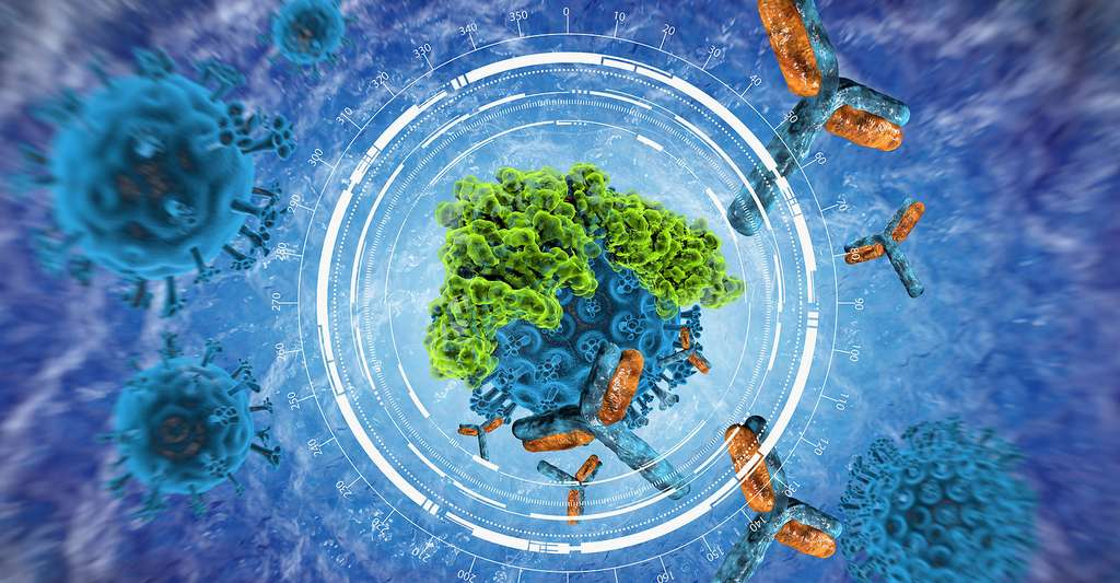 Effet d'un antibiotique sur un virus. © Vitstudio, Shutterstock