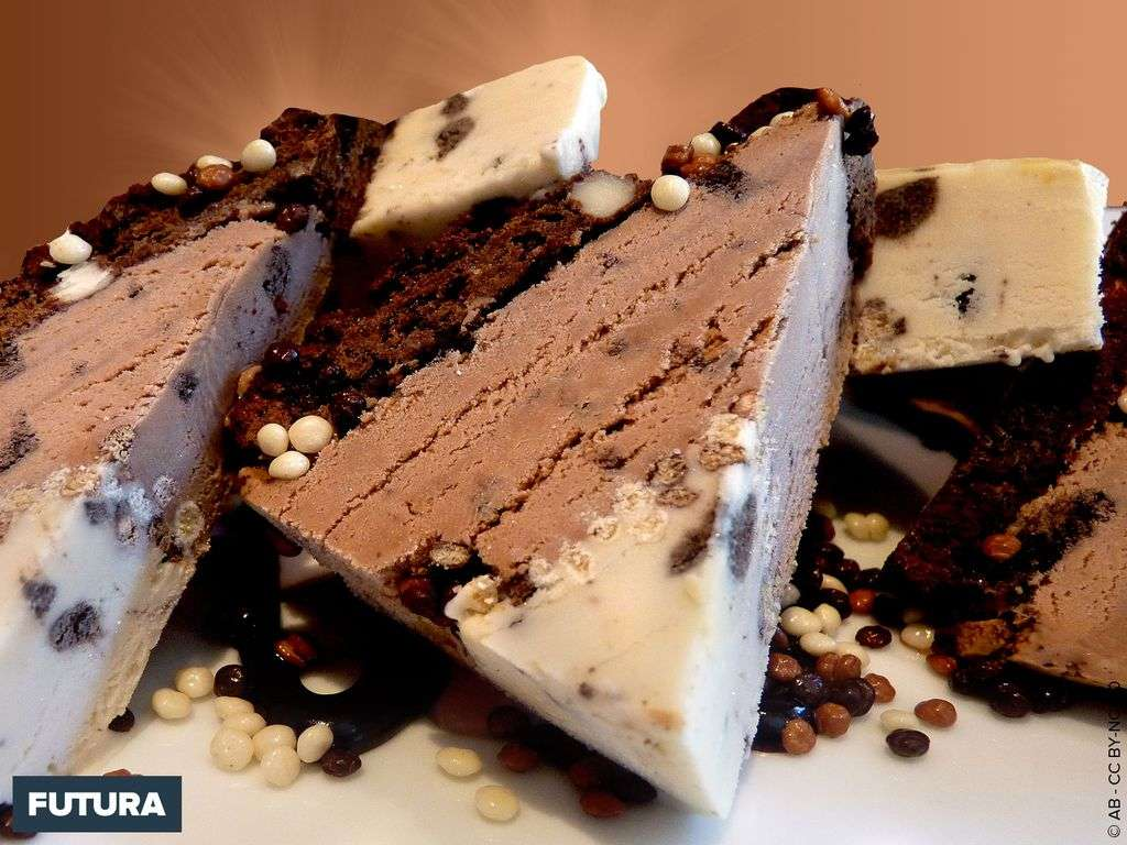 Tranche glacée chocolat praliné