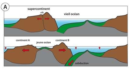 Figure 16 : Tectonique des plaques et niveau marin.