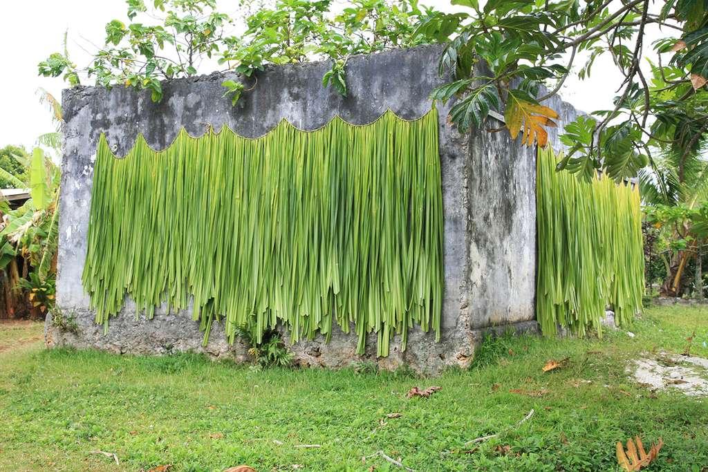 Séchage des feuilles de fara à Rimatara