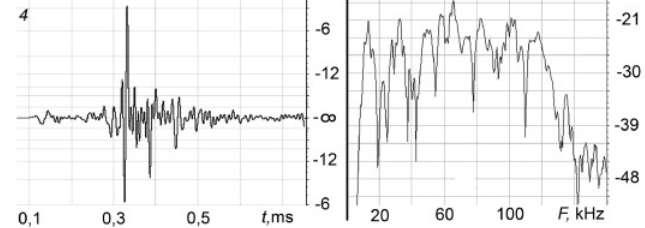 Un exemple d'émission ultrasonore produite par Yana (la femelle). Cette série d'impulsions est caractérisée par les variations de pression (à gauche) et s'étale sur une très large gamme de fréquences (à droite). Selon l'auteur de l'étude, ce « NP » serait un mot, ou au moins un phonème. © Vyacheslav A. Ryabov, St. Petersburg Polytechnical University Journal : Physics and Mathematics
