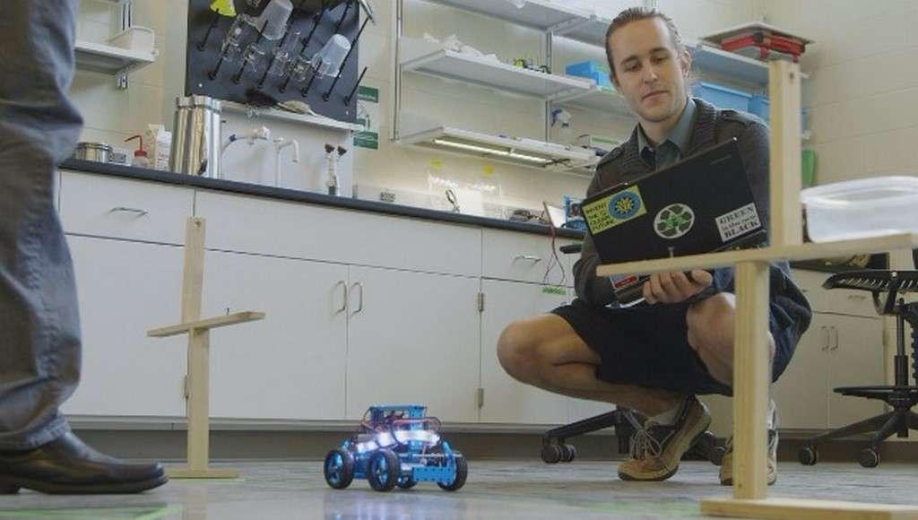 Grâce à leurs modèles mathématiques, les chercheurs du Virginia Tech ont pu simuler le comportement d'un robot contrôlé par un « cerveau bactérien ». Ils ont notamment découvert qu'ils pouvaient jouer sur la programmation biochimique de la bactérie pour obtenir des réactions plus élaborées de la part du robot. © Virginia Tech