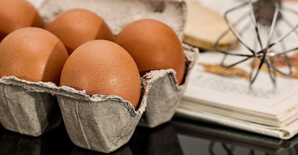 L'allergie aux œufs est une des allergies alimentaires. © Stevepb, DP