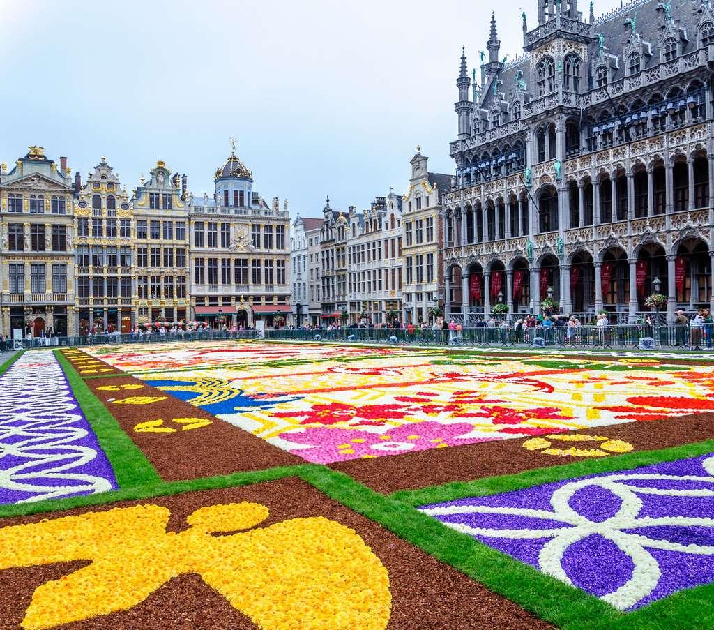Les tapis de fleurs à Bruxelles, un décor éphémère qui requiert la participation de centaines de volontaires. Ici, celui de l'année 2016, dédié aux 150 ans d'amitié entre le Japon et la Belgique. © jasckal, Fotolia