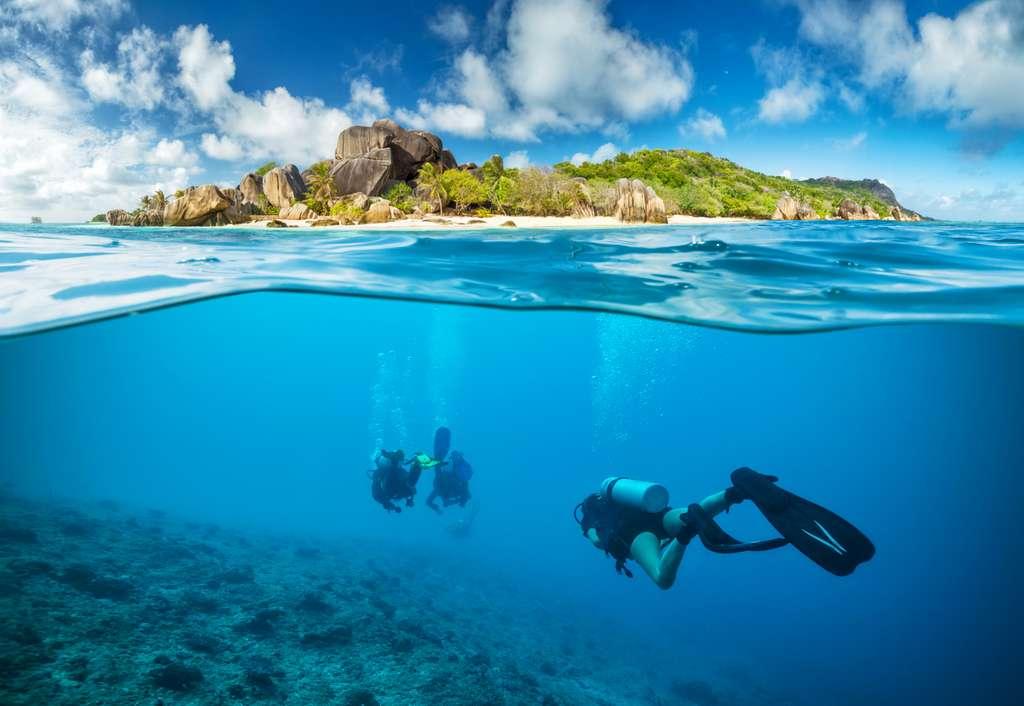 L'archipel des Seychelles est le lieu d'un vaste programme de restauration des récifs coralliens. © Jag_cz, Adobe Stock