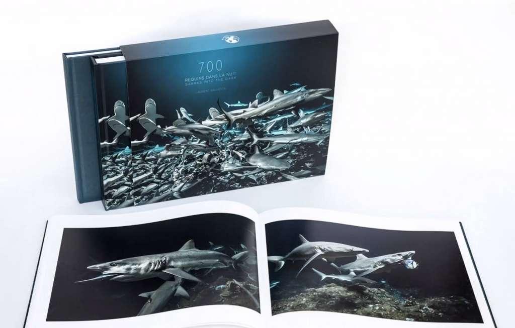 Dans quelques semaines, Laurent Ballesta nous offrira la possibilité de remporter son magnifique livre «700 requins dans la nuit». © Andromède Océanologie