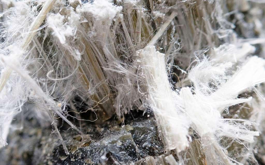 Les Grecs qualifiaient l'amiante d'indestructible. Ils l'appelaient également fibre d'or (chrysotile). © Techlys