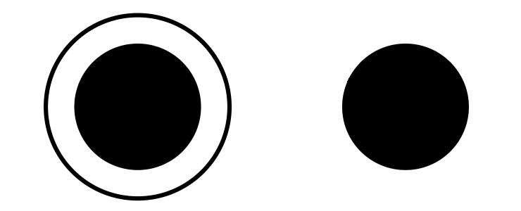 L'illusion de Delbœuf et ses cercles concentriques