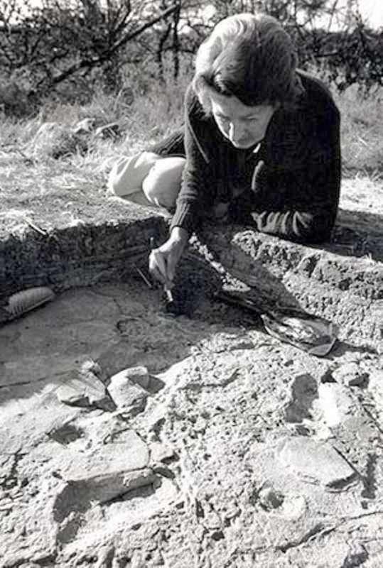La paléontologue Mary Leakey (1913-1996) en train de dégager une partie de la fameuse piste de Laetoli en Tanzanie. © leakeyfoundation