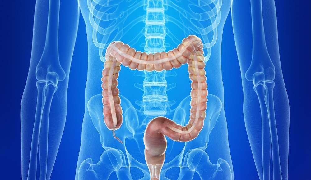 Vivre après une colectomie, c'est possible à condition de surveiller son alimentation. © Sebastian Kaulitzki, Fotolia