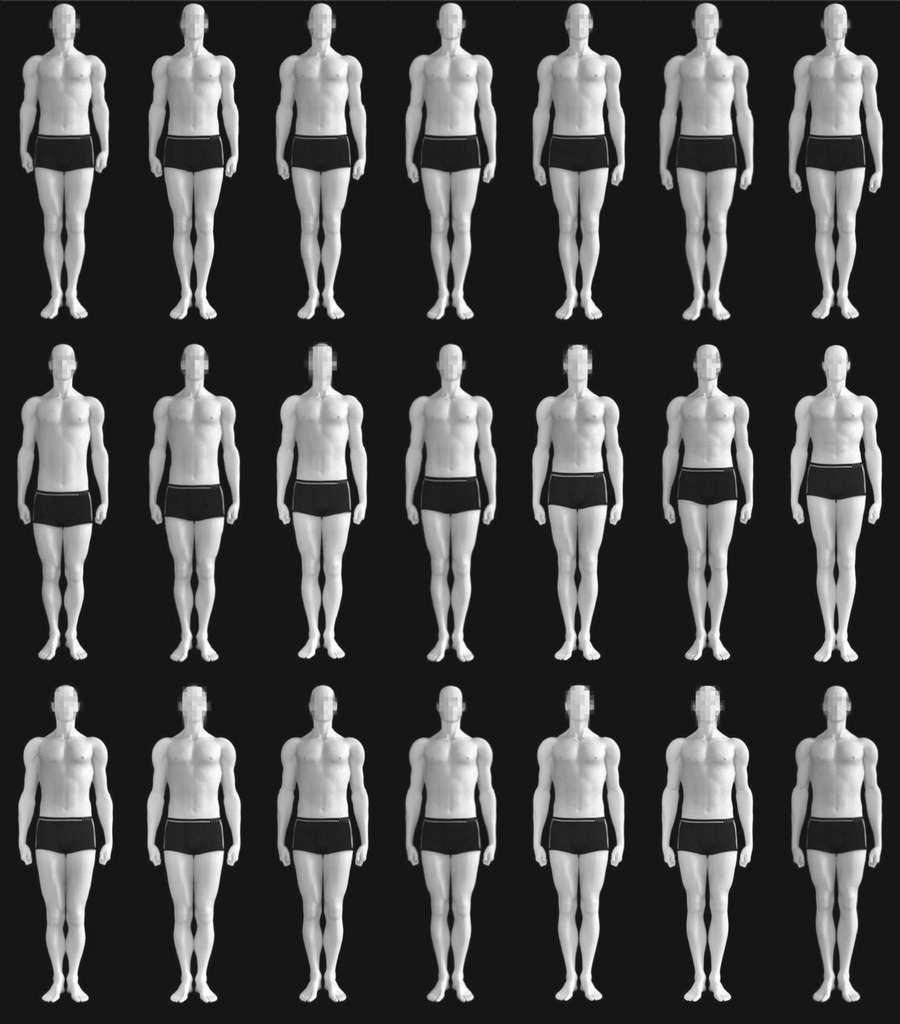 Les différents silhouettes montrent des ratios plus ou moins grands pour la longueur des bras (première ligne), des jambes (deuxième ligne) ou des proportions de chaque membre (troisième ligne). Le ratio va par ordre croissant, la silhouette du milieu représentant la stature moyenne. © Thomas Versluys et al, Royal Society Open Science, 2018