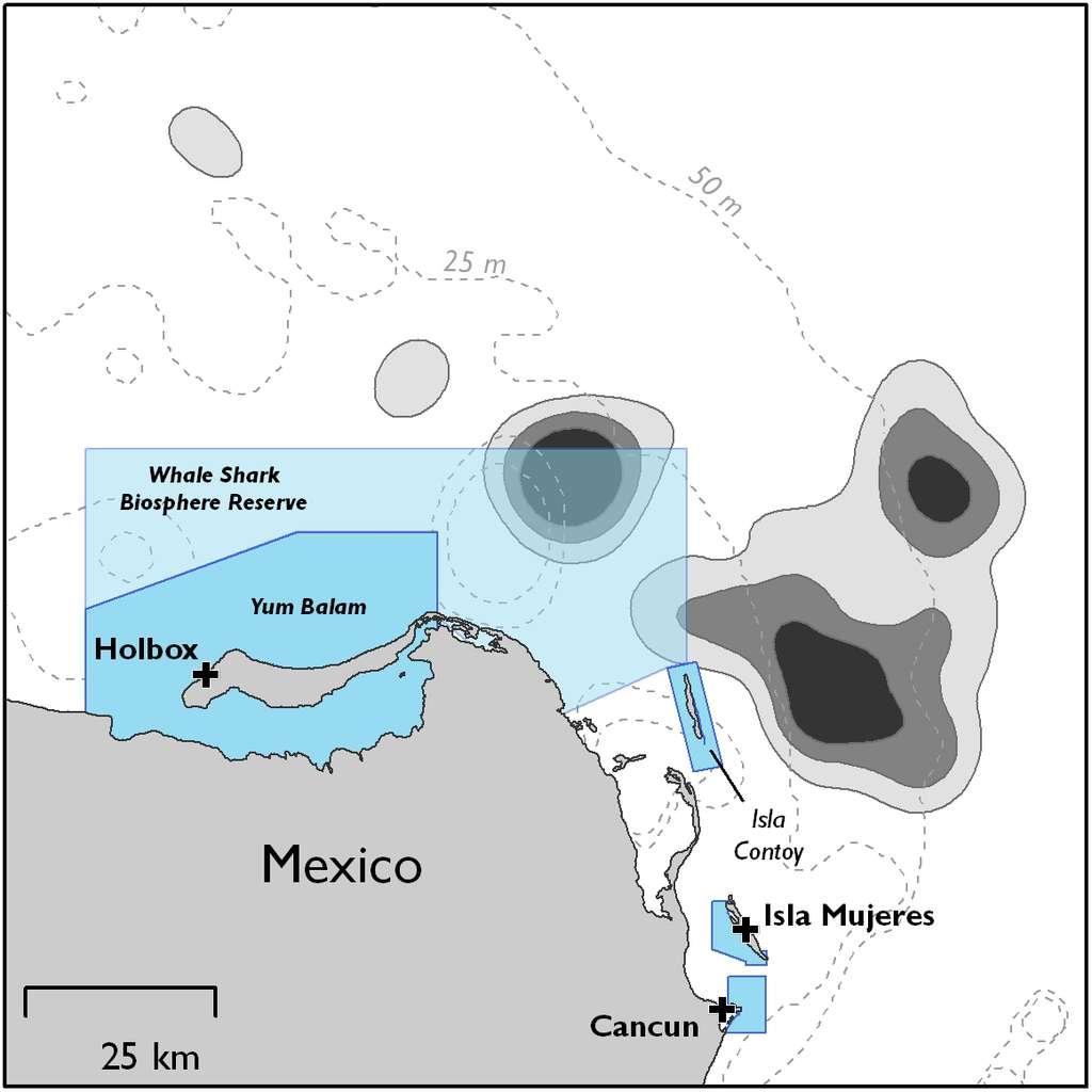 Les raies manta vivent principalement dans des eaux peu profondes et si possible touchées par des phénomènes d'upwelling. Bien qu'elles se déplacent beaucoup, elles semblent restées fidèles à certains sites indiqués en gris sur la carte (la probabilité de les rencontrer est proportionnel à l'intensité de la couleur). Les zones bleues représentent des aires marines protégées. Il ne faudrait pas les modifier beaucoup pour leur permettre de mieux protéger les raies. Les croix marquent la position des principaux ports de la région. © Graham et al. 2012, Plos One